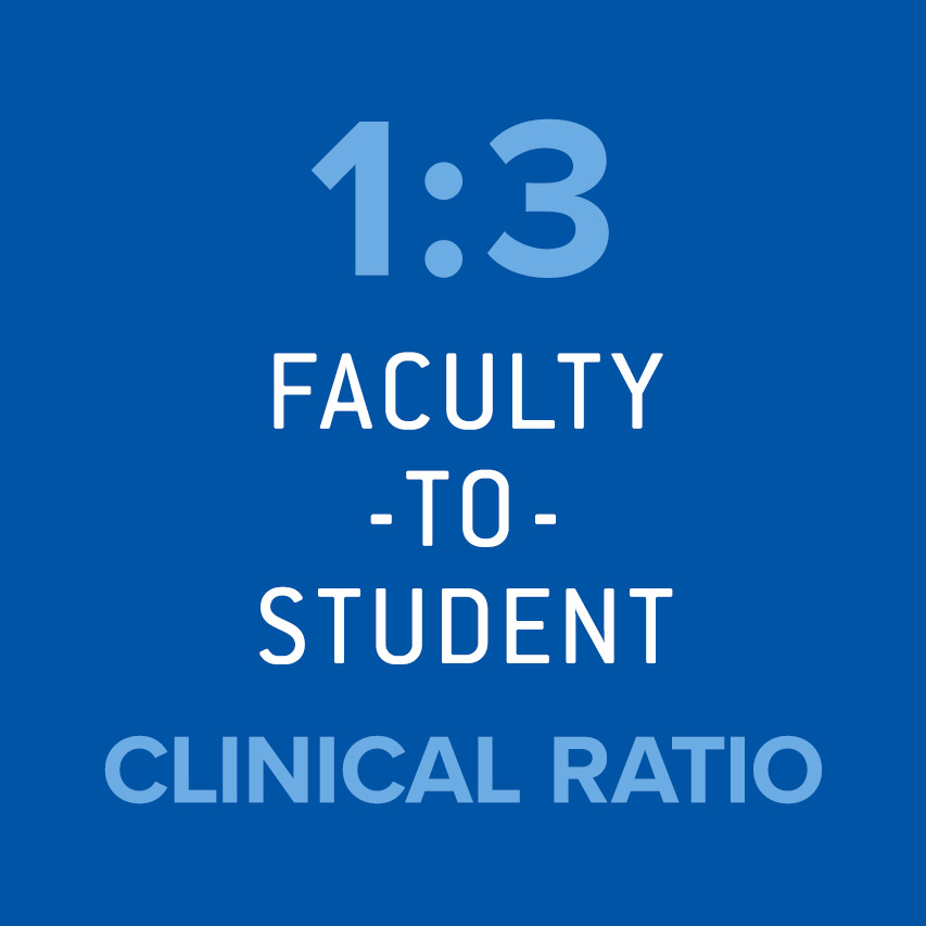 1:3 Faculty-to-student clinical ratio